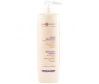 Шампунь регулирующий работу сальных желез Hair Company Professional Double Action Sebocontrol Shampoo